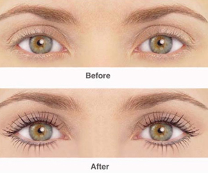 Eyebrow Tinting Shellharbour Region, Eyelash Extensions Oak Flats, Professional Eyelash Extensions Kiama, Eyelash Grafting Shell Cove, Eyelash Tinting Flinders
